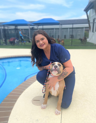 veterinary manager